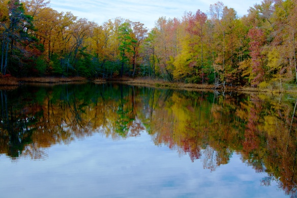 Turtle Pond in the Fall