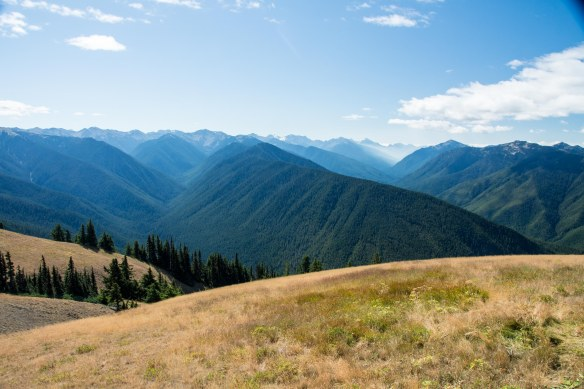 View from Hurricane Ridge